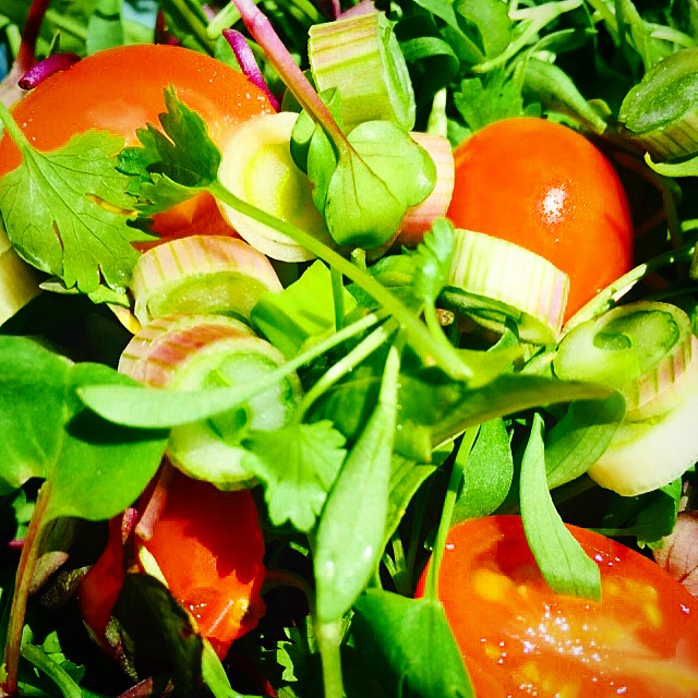 six ingredient salad