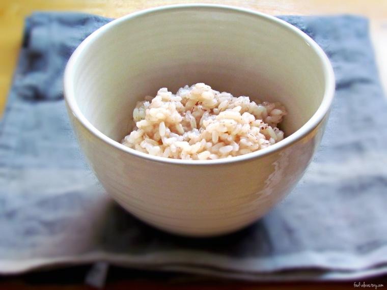 rice and yogurt